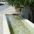 L'eau, source de vie
