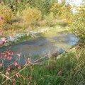 L'étang de Villars-Mendraz